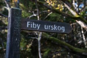 Fiby urskog skylt för webb